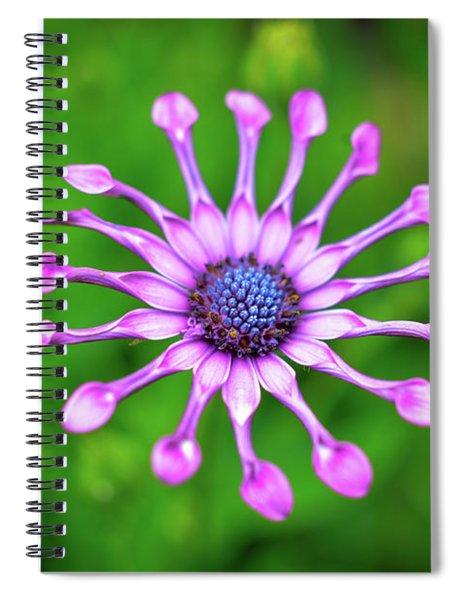Circular Spiral Notebook