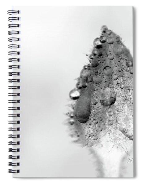 Clematis Bud In Rain Spiral Notebook