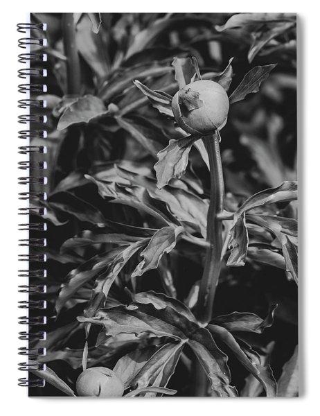 Climb Every Mountain Spiral Notebook