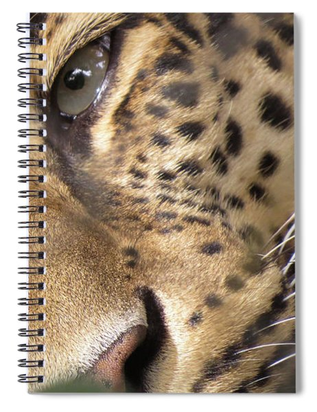 Close-up Spiral Notebook