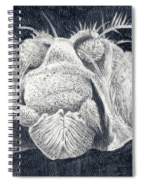 Close-up Portrait Spiral Notebook