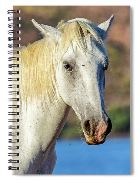 Closeup White Wild Horse With Lake Background Spiral Notebook