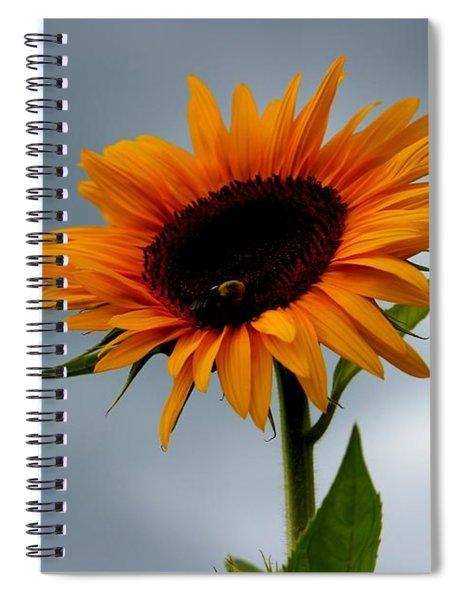 Cloudy Sunflower Spiral Notebook