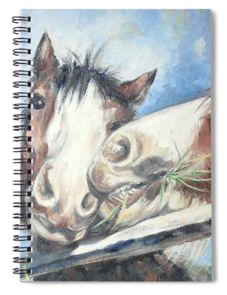 Clydesdale Pair Spiral Notebook