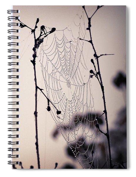Cob Webbed Spiral Notebook