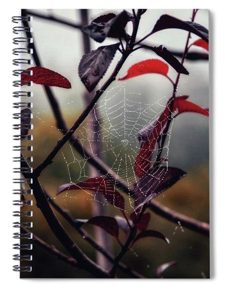Cobweb Spiral Notebook