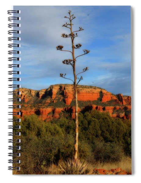 Coconino Red Rock 006 Spiral Notebook