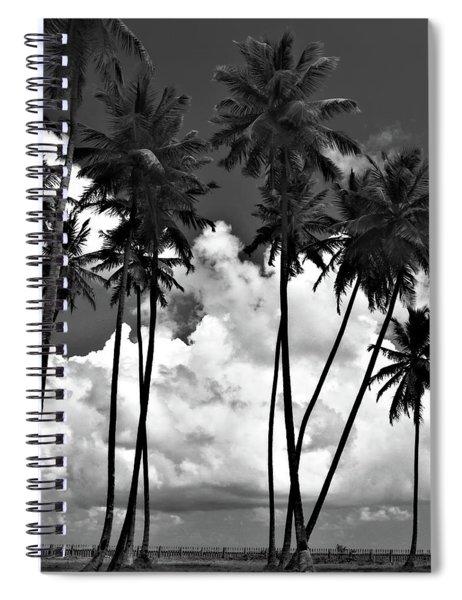 Coconut Trees At Mayaro Spiral Notebook