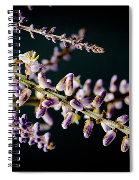 Cocoons Spiral Notebook
