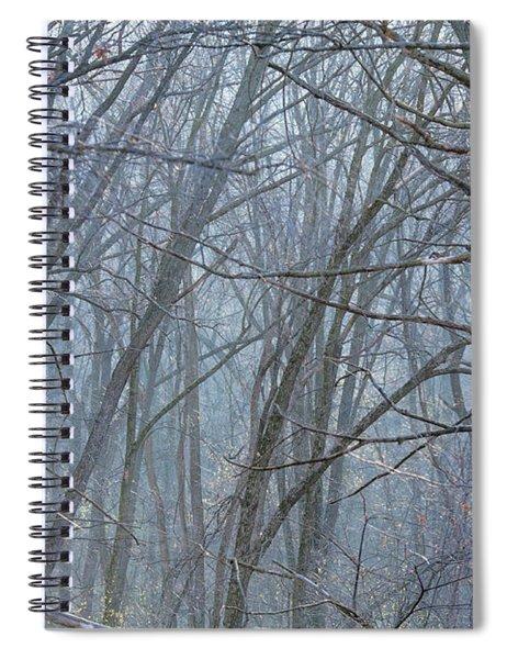 Cold Winter Forest Spiral Notebook