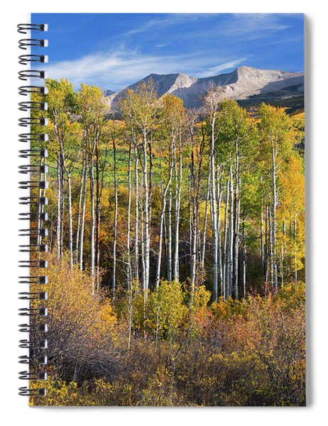 Spiral Notebook featuring the photograph Colorado Autumn Aspens by John De Bord