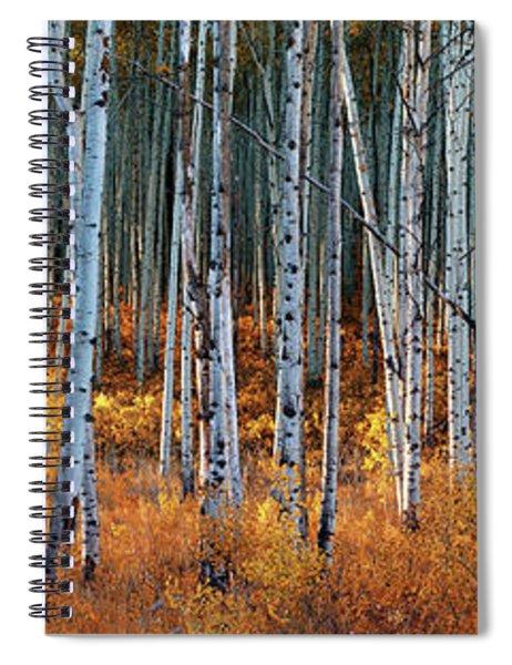 Colorado Autumn Wonder Panorama Spiral Notebook