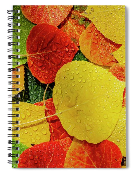Colorful Aspen Tree Leaves On Ground In Morning Sunlight Spiral Notebook