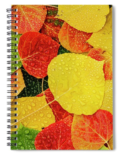 Colorful Aspen Tree Leaves With Water Drops Spiral Notebook