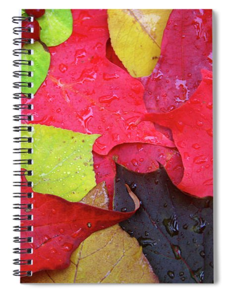Colors Of Fall Spiral Notebook