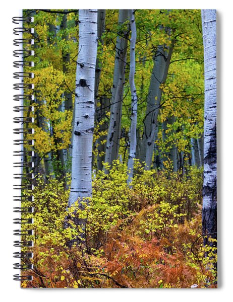 Colors Of October Spiral Notebook by John De Bord