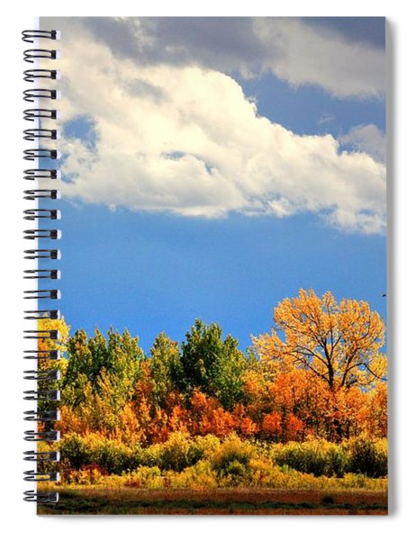 Colour Time Spiral Notebook