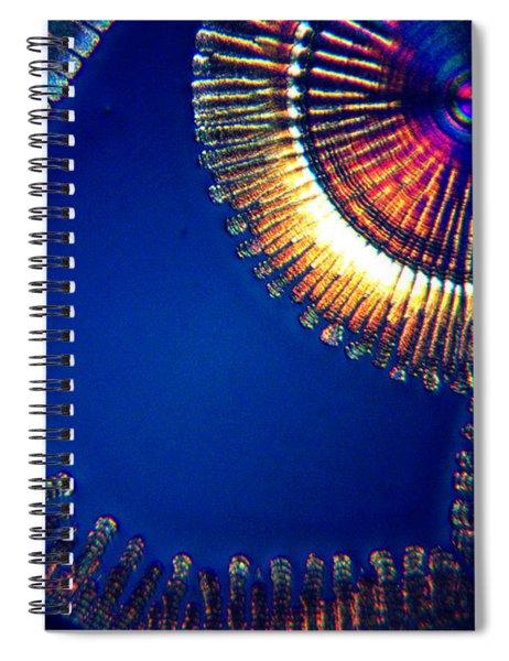 Complicated Joy Spiral Notebook