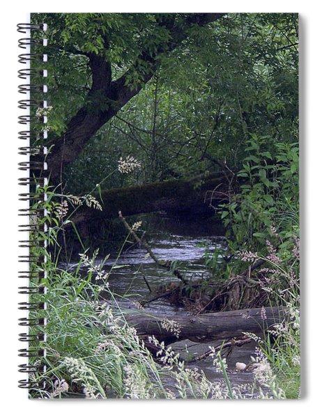 Cool Depths Spiral Notebook