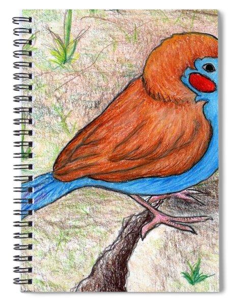 Cordon Bleu Finch Spiral Notebook