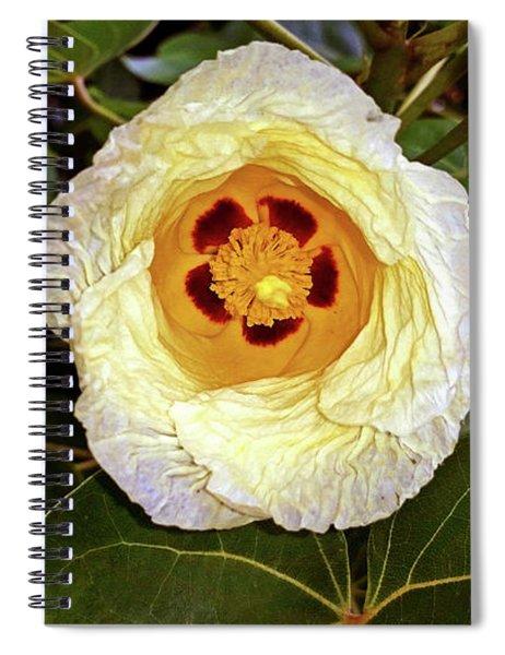 Cottoning Spiral Notebook