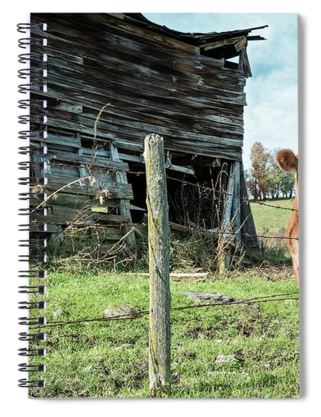 Cow By The Old Barn, Earlville Ny Spiral Notebook