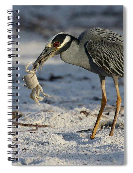 Crab For Breakfast Spiral Notebook