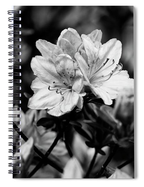 Creepy In Monochrome Spiral Notebook