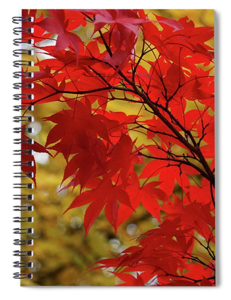 Crimson Queen Spiral Notebook