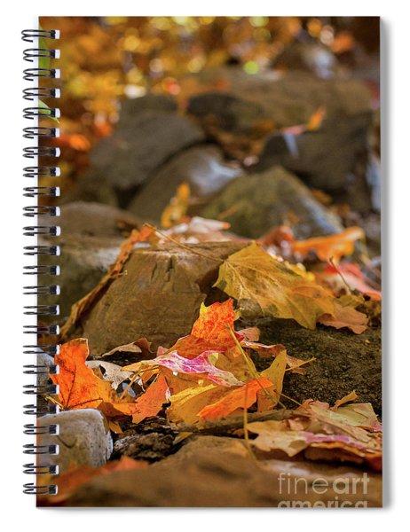 Crisp Days Of Fall Spiral Notebook