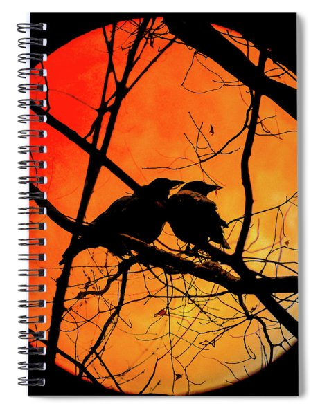 Crows Moon Spiral Notebook
