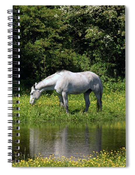 Cumbria. Ulverston. Horse By The Canal Spiral Notebook