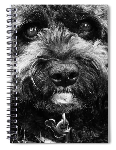 Cutest Dog On The Planet Spiral Notebook