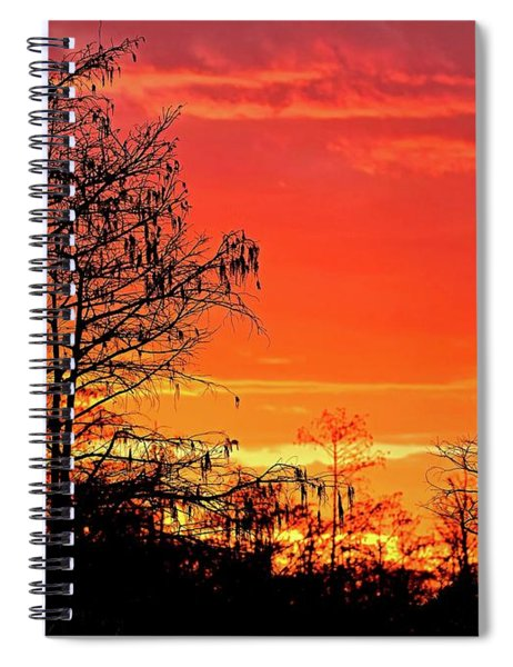 Cypress Swamp Sunset 2 Spiral Notebook