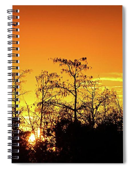Cypress Swamp Sunset 3 Spiral Notebook
