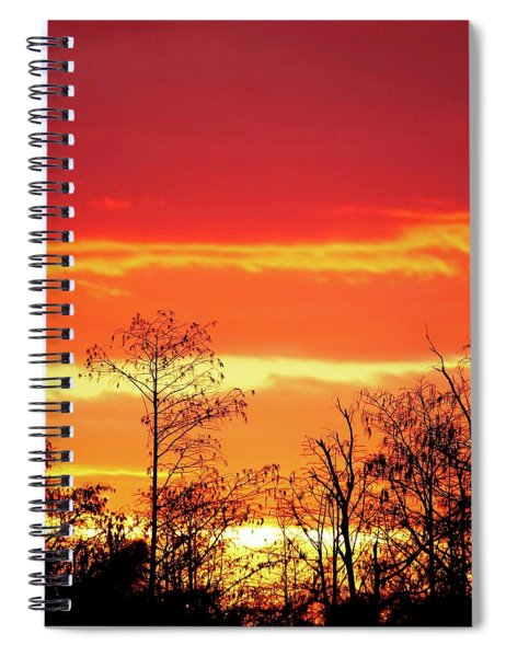 Cypress Swamp Sunset 5 Spiral Notebook