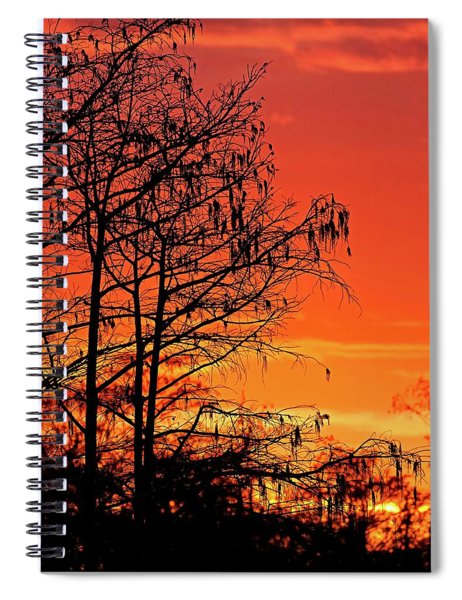 Cypress Swamp Sunset Spiral Notebook