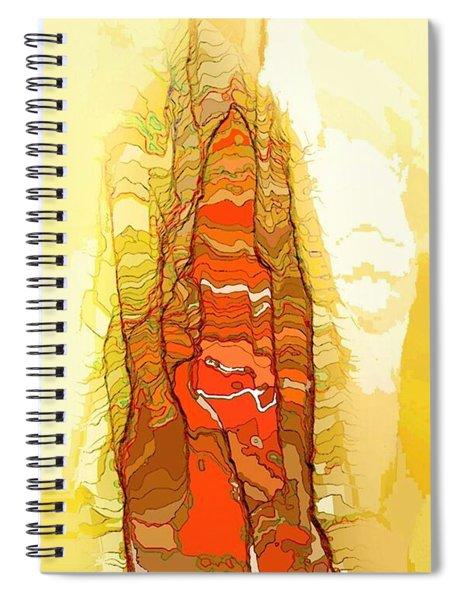 Da2 Da2466 Spiral Notebook