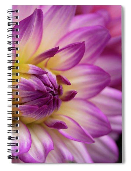 Dahlia II Spiral Notebook