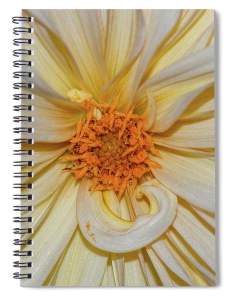 Dahlia Summertime Beauty Spiral Notebook
