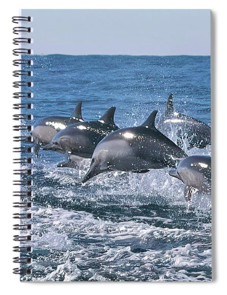 Dancing Dolphins Spiral Notebook