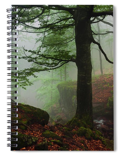 Dark Forest Spiral Notebook