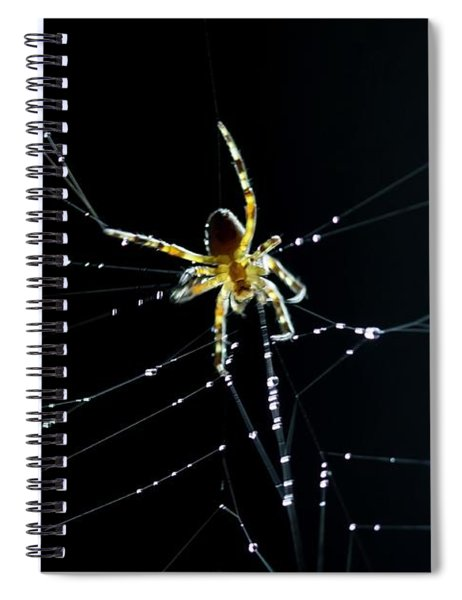 Dark Kitchen Spiral Notebook
