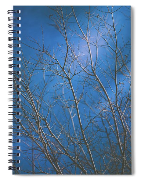 Dark Winter Spiral Notebook