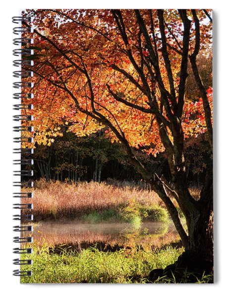 Dawn Lighting Rhode Island Fall Colors Spiral Notebook