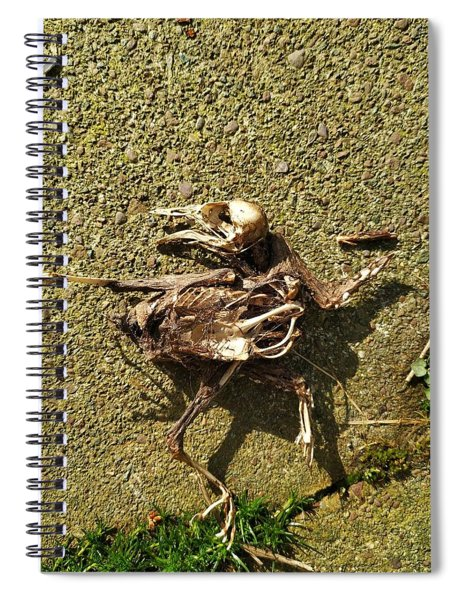Death Shows Us We Are Nothing But Bones Spiral Notebook