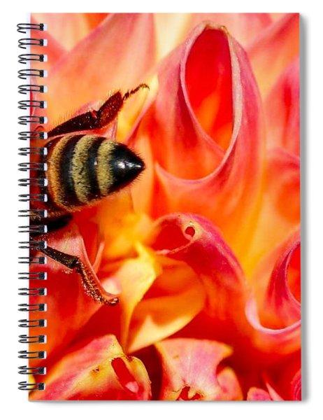 Deep Dive Spiral Notebook