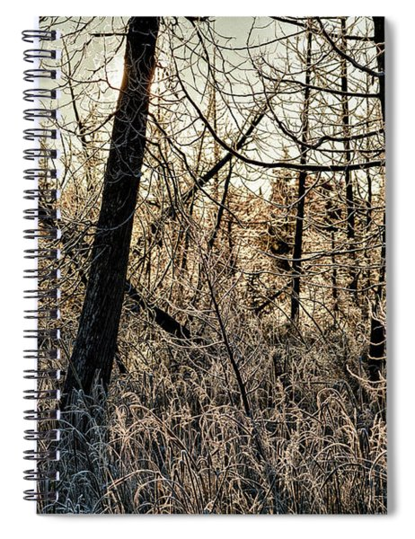 Deep Frost Spiral Notebook