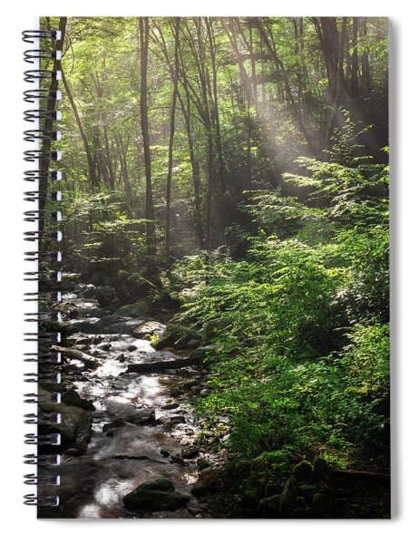 Deep In The Forrest - Sun Rays Spiral Notebook