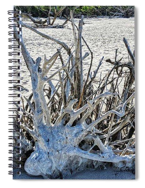 Deep Roots Spiral Notebook